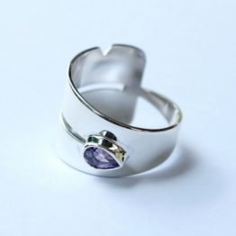 DSW Rings - Fertility